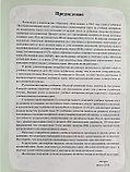 Веселый китайский язык. Учебник для школьников 3 (второе издание, 2017 г.), фото 2