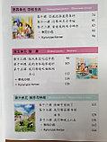 Веселый китайский язык. Учебник для школьников 3 (второе издание, 2017 г.), фото 6