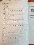 Developing Chinese. Чтение и письмо. Начальный уровень. Часть 1, фото 7