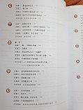 Developing Chinese. Чтение. Высший уровень. Часть 2, фото 3