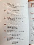 Developing Chinese. Письменный аспект. Высший уровень. Часть 2, фото 3