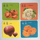 """Карточки с картинками """"Овощи и фрукты"""" на китайском языке, фото 6"""