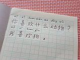 [Комплект 20 шт.] Тетрадь для написания иероглифов. Клетка 14 мм с пунктиром и расширенным полем для пиньинь, фото 4