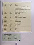 Учитесь у меня китайскому языку. Учебник 3 (на рус. языке), фото 9