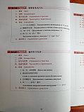Новый практический курс китайского языка для начинающих. Учебник, фото 6