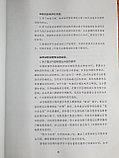 Новый практический курс китайского языка для начинающих. Сборник для преподавателей, фото 6