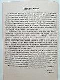 Веселый китайский язык. Учебник для школьников 1, фото 3