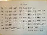 Веселый китайский язык. Карточки со словами 1, фото 2