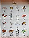 Веселый китайский язык. Учебные таблицы 1, фото 4