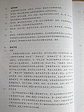 Веселый китайский язык. Книга для учителя 3 (второе издание, 2016 г.), фото 3