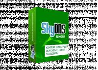 Веб-фильтр SkyDNS Школа (для образовательных учреждений и библиотек)
