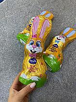 Шоколадный заяц (Гермния)