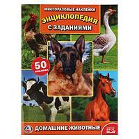 Умка Энциклопедия с заданиями и многоразовыми наклейками «Домашние животные»