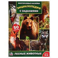 Умка Энциклопедия с заданиями и многоразовыми наклейками «Лесные животные»