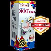 Напиток ягодный Эликсир «ЖКТерия»