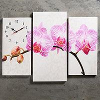 """Часы настенные, модульные, серия: Цветы, """"Розовые цветки орхидеи"""", 60х80 см, микс"""