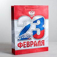 Пакет ламинированный вертикальный «23 февраля!», MS 18 × 23 × 8 см