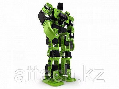 Человекоподобный робот HOVIS Lite