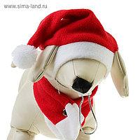 """Костюм """"Новогодний"""" для собак с шарфиком, S- M (обьем головы 26-28 см, высота 18-20 см)"""