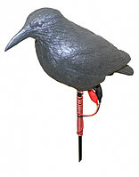 Подсадное чучело. Ворона черная c электроприводом