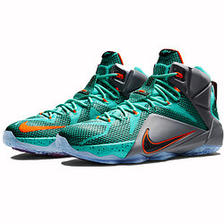 Nike Lebron James XII (12)