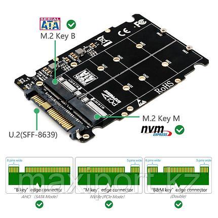 Адаптер M.2 SSD в U.2, адаптер 2 в 1 M.2 NVMe и SATA, фото 2