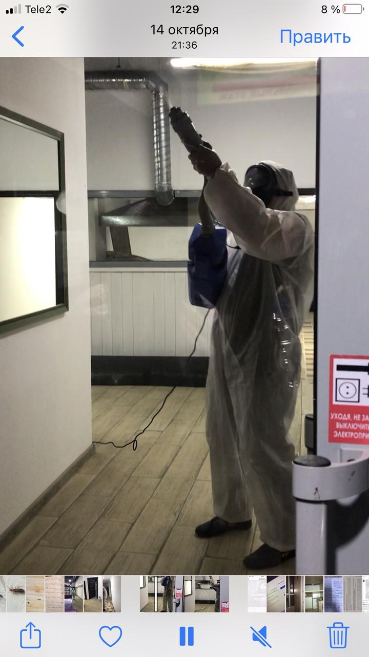 Уничтожение клопов препараты без запаха - фото 4