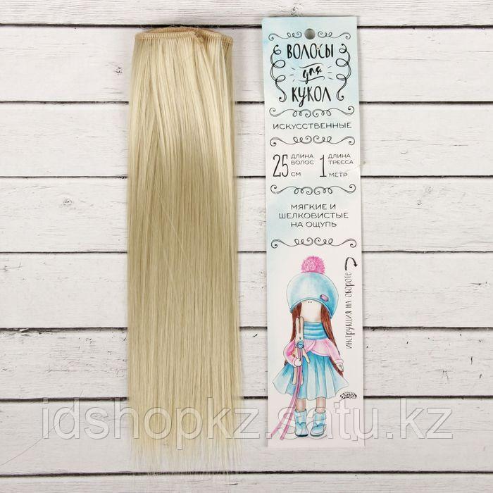 Волосы - тресс для кукол «Прямые» длина волос: 25 см, ширина: 100 см, цвет № 88 - фото 1