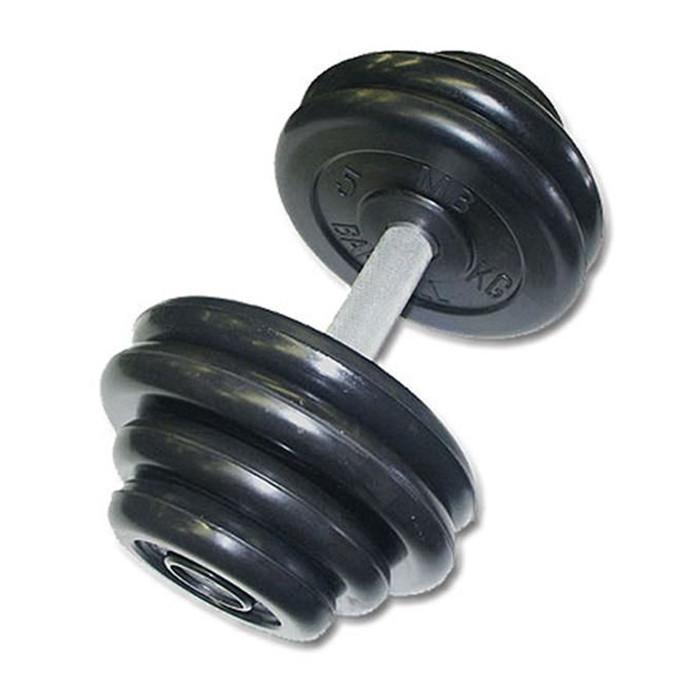 Гантель «Профи» 46 кг