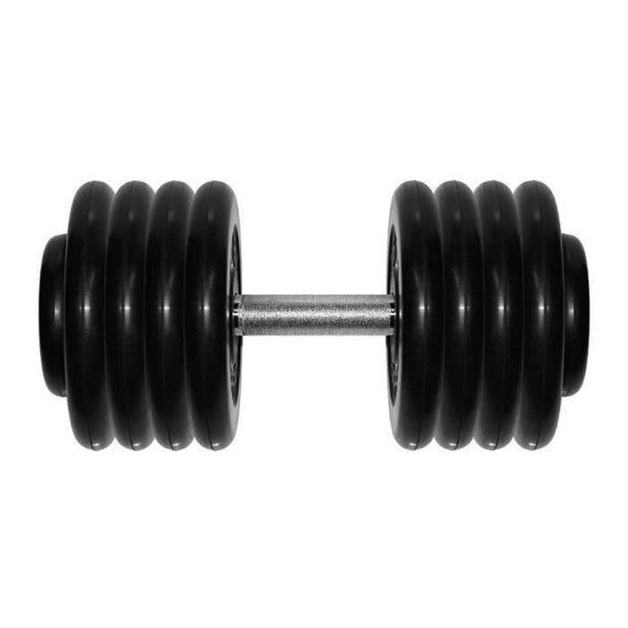 Гантель «Профи» 43,5 кг