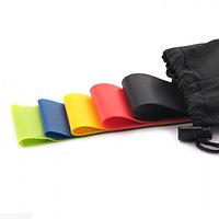 Резиновые петли - фитнес жгуты Mini Bands 5 штук с чехлом