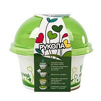 """Набор для выращивания. """"Моя микрозелень"""": РУКОЛА, зеленый, белый, , 33801"""