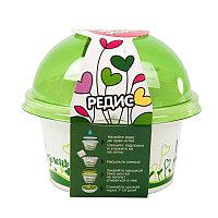 Набор для выращивания микрозелени: РЕДИС, зеленый, белый, , 33802