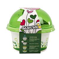 Набор для выращивания микрозелени.  БАЗИЛИК, зеленый, белый, , 33803