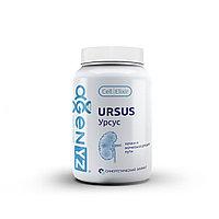 Комплекс растительных экстрактов и микроэлементов Урсус