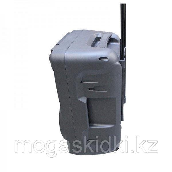 Колонка КАРАОКЕ с аккумулятором Meirende MR-109 - фото 4