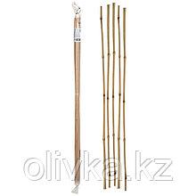 Колышек для подвязки растений, h = 60 см, d = 0.6 - 0.8 см, набор 5 шт., бамбук