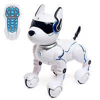 Робот - собака, радиоуправляемый «Фьючер», русское озвучивание, работает от аккумулятора