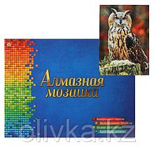 Алмазная мозаика квадратная 30×40 см, полное заполнение, 32 цв. «Серьезный филин»