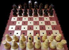 Noname Шахматы для незрячих с деревянной доской арт. ДС23694