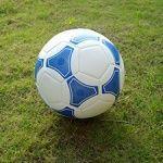 ИА Мяч футбольный, звенящий арт. ИА22836