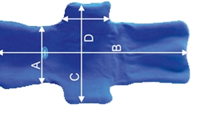 Stabilo Стабилизирующее сидение COMFORTABLE Plus DUO арт. RX19118