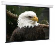 Noname Экран настенный с электроприводом 300х300 см Exclusive Medium арт. RN17054