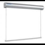 Noname Экран настенный с электроприводом 400х300 см Matte White Projecta Master Electrol арт. RN17058