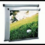 Noname Экран настенный с электроприводом 300х300 см Braun Professional арт. RN17811