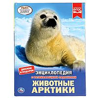 Энциклопедия с развивающими заданиями «Животные Арктики»