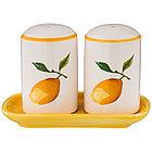 """Набор для специй из 2 пр. серия """"сочные лимоны"""" диаметр=5 см высота=7,5 см (кор=48 шт.)"""