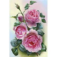 Набор юного художника (20х30) РОЗОВЫЕ РОЗЫ (15 цветов)