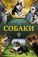 Барановская И. Г., Вайткене Л. Д., Хомич Е. О.: Собаки. Популярный иллюстрированный гид