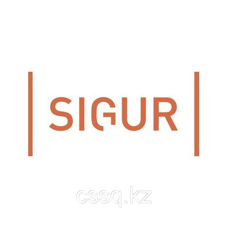 SIGUR ПО «Графическое оформление пропусков» Дополнительный модуль